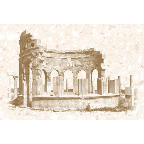 Пальмира  200*300